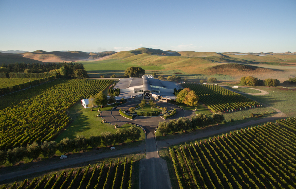 Sileni Vineyard, Hawkes Bay wine Book