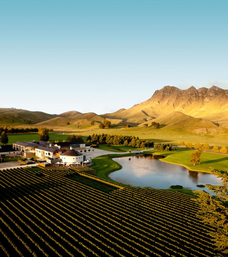 Aerial - Giants Winery Te Mata Peak