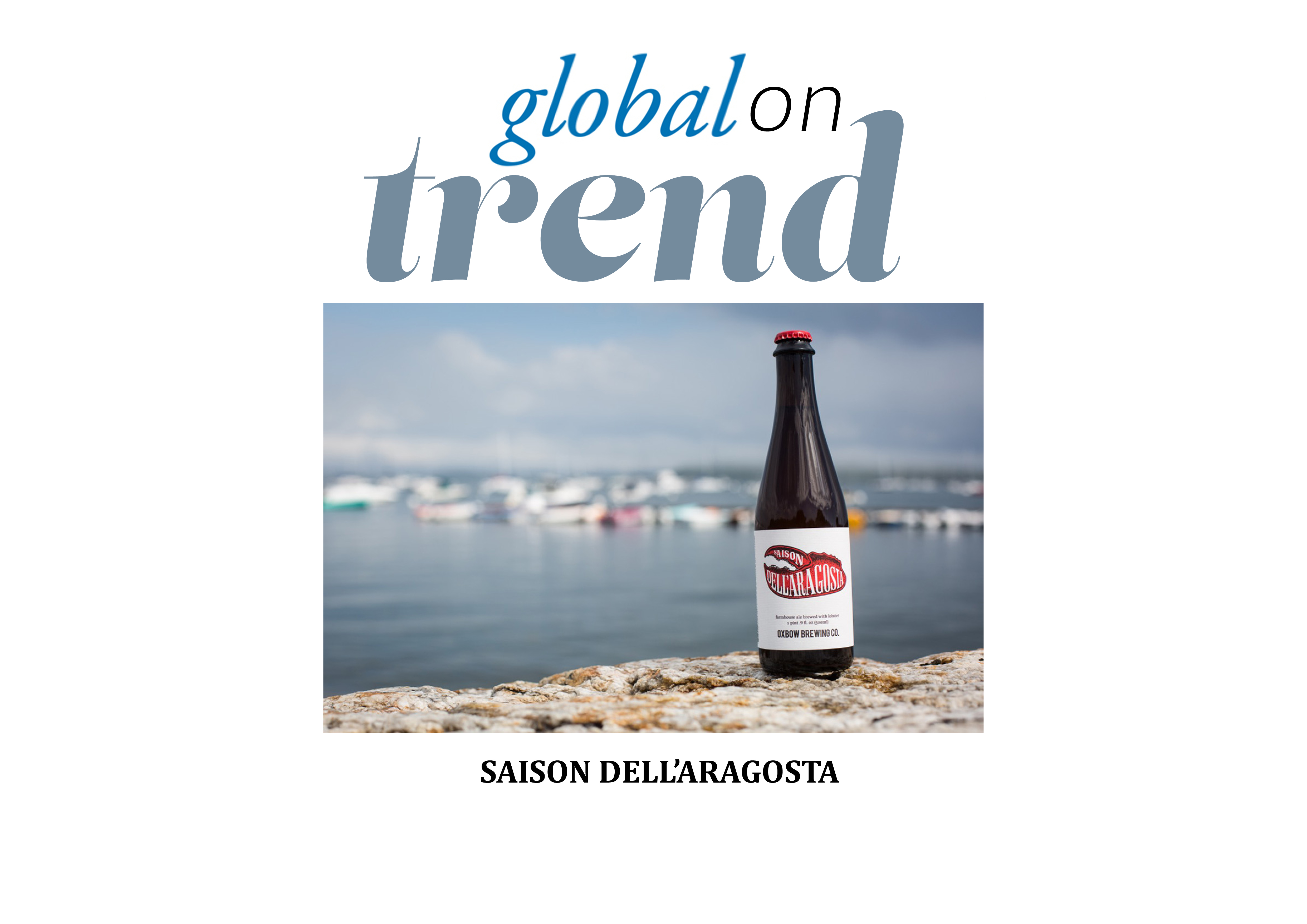 A bottle of Saison dell'Aragosta on a wall with a marina in the backgound