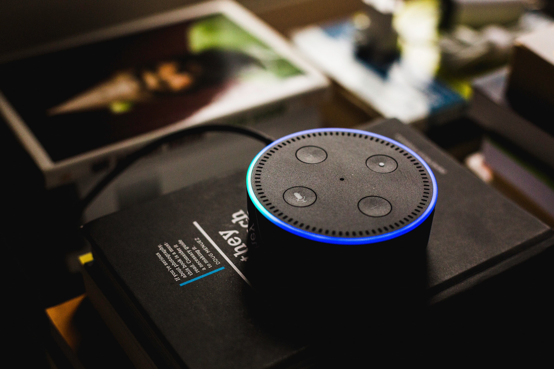 Amazon Alexa top view